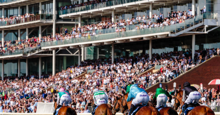 sports betting, sports betting winner, Different Types of Betting, horse races, Race and Sportsbook