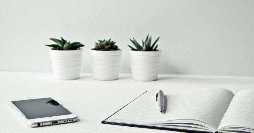 Pen, Notebook, Phone, plants on a white table