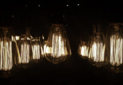 Light Bulbs at night